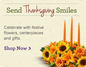 Send Thanksgiving Smiles Celebrate with festive flowers, centerpieces and gifts.  Shop Now