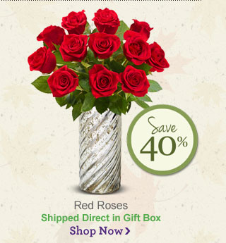 Red Roses                                 Shop Now
