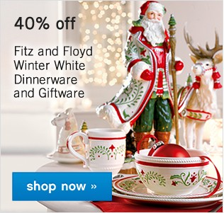 40% off Dinnerware and Giftware. Shop now.