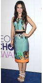 Rachel Bilson At People's Choice Awards Nominations Event.