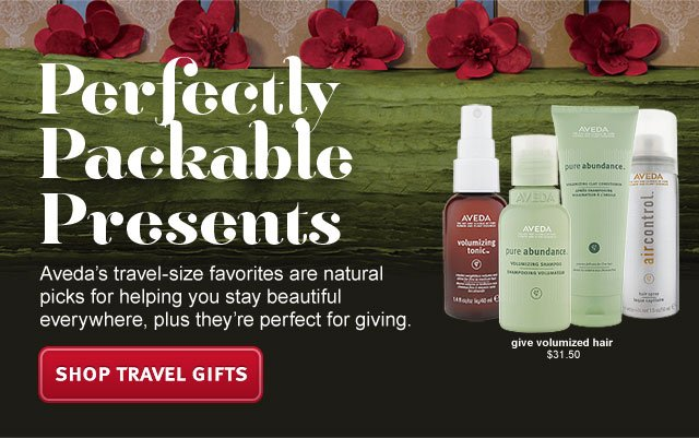 perfectly packable presents. shop travel gifts.