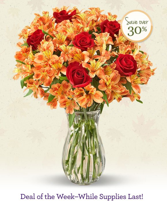 Fall Rose & Peruvian Lily Bouquet + Free Vase just $29.99* Shop Now