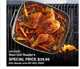 EXCLUSIVE - Steel Grill Roaster - SPECIAL PRICE $39.96 - REG. $49.95, 20% OFF REG. PRICE
