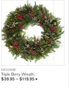 EXCLUSIVE - Triple Berry Wreath, $39.95 - $119.95