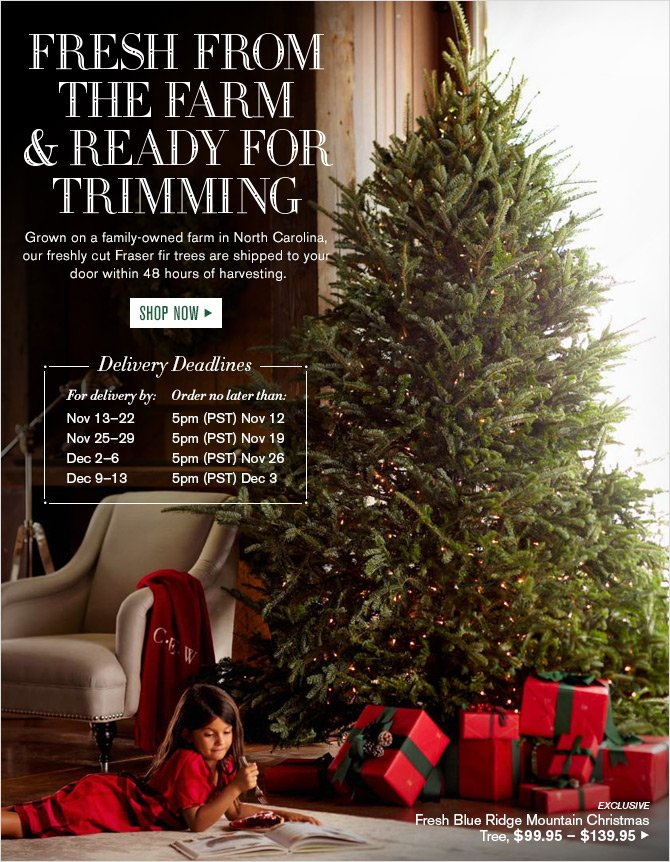 Williams-Sonoma: Order Today: Fresh Christmas Trees Delivered to ...