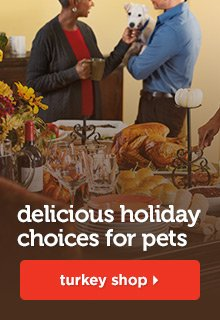 Delicious holiday choices for pets