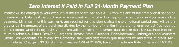 Zero interest if paid in full 24-Month Payment Plan
