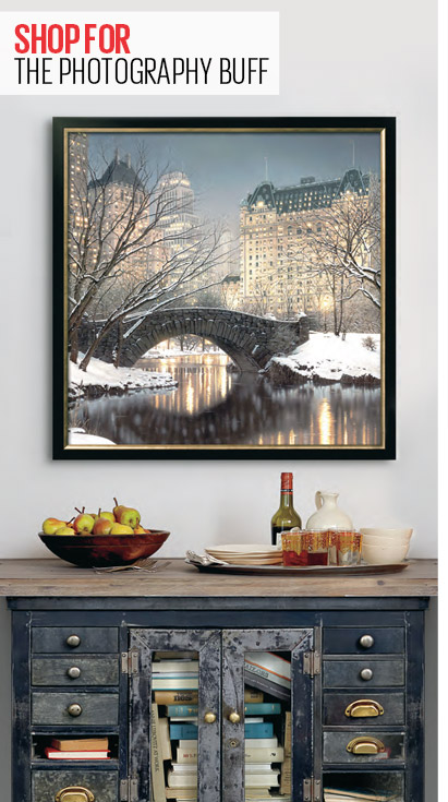 SHOP FOR THE PHOTOGRAPHY BUFF - TWILIGHT IN CENTRAL PARK By: Rod Chase