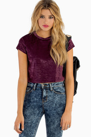 Smooth Like Velvet Crop Top 21