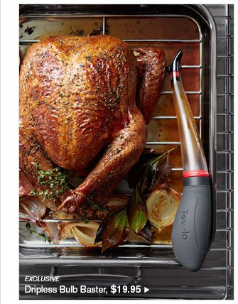 EXCLUSIVE -- Dripless Bulb Baster, $19.95
