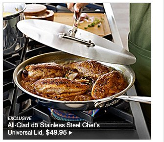 EXCLUSIVE - All-Clad d5 Stainless Steel Chef's Universal Lid, $49.95