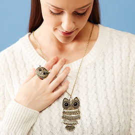 What a Hoot: Owl Accessories