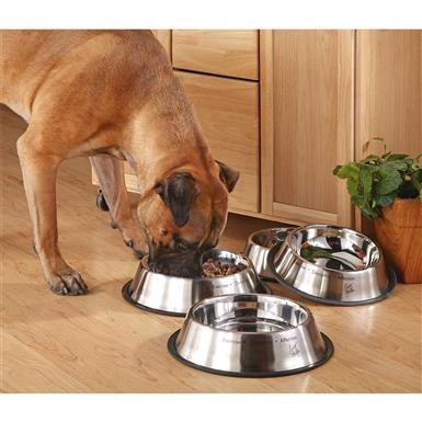 2-Pk. of Cesar Millan® 8-cup Stainless Steel Pet Bowls