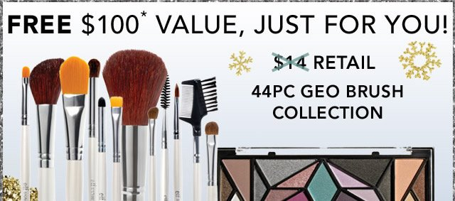 Free $100 Value, Just For You! 445PC Geo Brush Collection