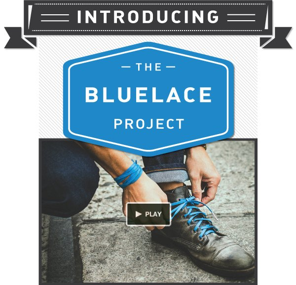 Introducing The Bluelace Project: