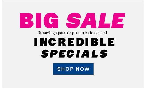 BIG SALE. Incredible Specials. Shop Now.