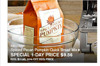 EXCLUSIVE - Spiced Pecan Pumpkin Quick Bread Mix - SPECIAL 1-DAY PRICE $9.56 - REG. $11.95, 20% OFF REG. PRICE