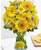 Make Lemonade™ in a Vase