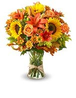 Say thanks with our bestselling Fields of Europe™ for Fall bouquet.
