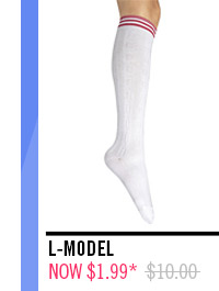 L-MODEL