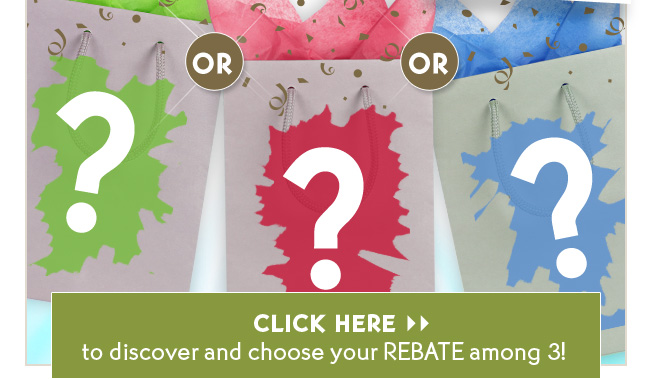 CLICK HERE to discover and choose your REBATE among 3!