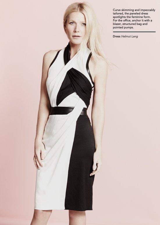 The Paneled Dress