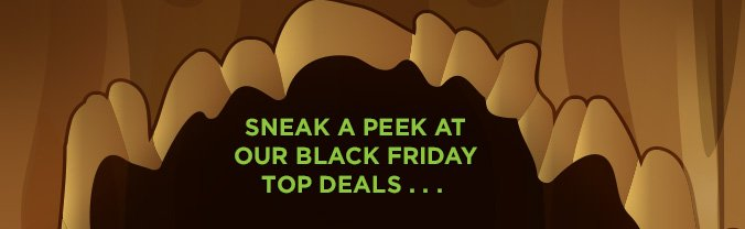 SNEAK A PEEK AT OUR BLACK FRIDAY TOP DEALS...