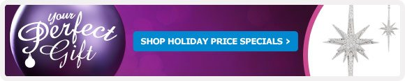 HOLIDAY PRICE SPECIALS
