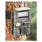 Stealth Cam® 6.0-megapixel Digital Camo Trail Camera