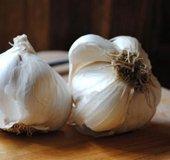 Garlic_NLsm