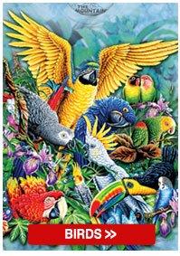 Kids Bird Collection