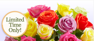 Can't make it there this year?  Send 24 Assorted Roses for just $29.99** Shop Now