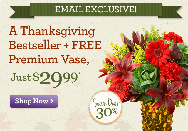 Email Exclusive! A Thanksgiving Bestseller + FREE Premium Vase,  just $29.99* Save Over 30%!  Shop Now