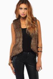 Fur The Love Vest 46