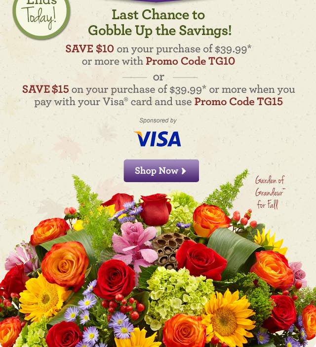 Gobble Up the Savings Before They're Gone! Save $10 on your purchase of $39.99* or more with Promo Code TG10 or Save $15 on your purchase of $39.99* or more when you pay with your Visa® card and use Promo Code TG15  Shop Now