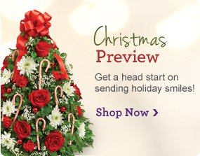 Christmas Preview  Get a head start on sending holiday smiles! Stop Now
