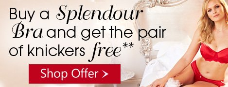 Buy a Splendour Bra and get the knickers FREE