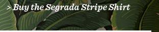 Buy The Segrada Stripe Shirt