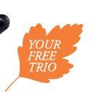 YOUR FREE TRIO