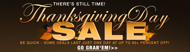 there's still time! thanksgiving day sale. be quick - some deals last just one day at up to 80+ percent off!