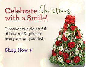 Celebrate Christmas with a Smile! Discover our sleigh-full of flowers & gifts for everyone on your list. Shop Now