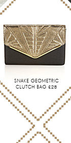 Snake Geometric Clutch Bag