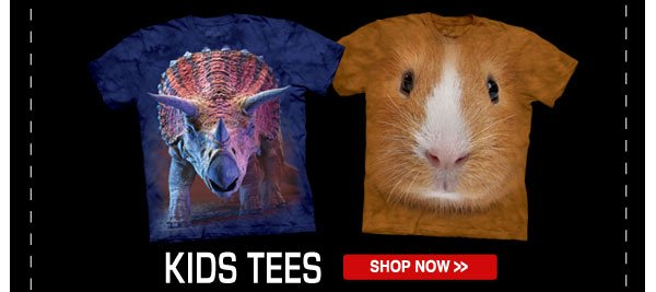 Shop our Kids Tees