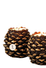 Set of 2 Pinecone Candleholders