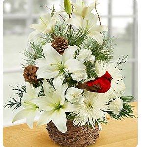 Wintertime Birds Nest of Flowers Shop Now