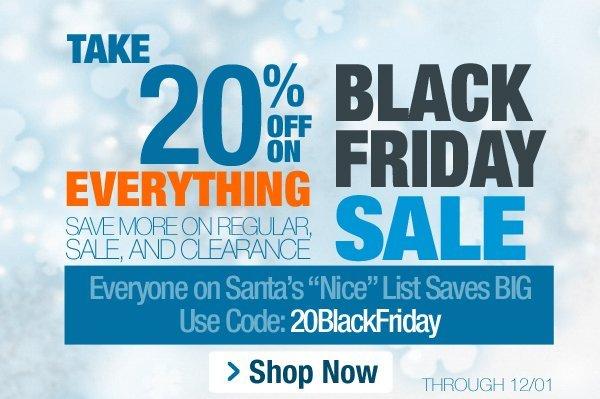 20% Off Black Friday Sale