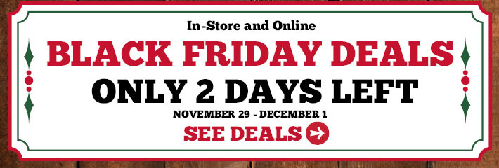 Black Friday Deals - Only 2 Days Left