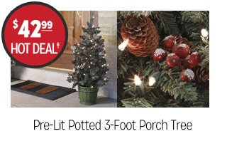 Pre-Lit Potted 3-Foot Porch Tree - $42.99 - HOT DEAL‡