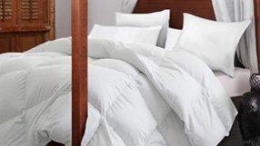 Get Cozy: Duvets