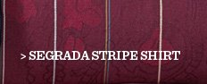 Segrada Stripe Shirt